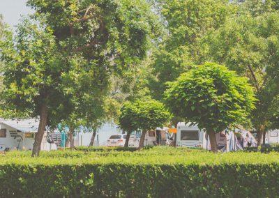aranypart_camping_balaton (52 of 70)